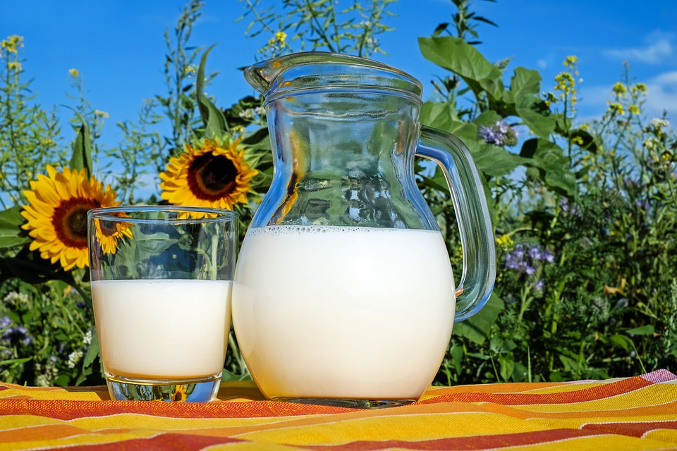Healthy Drinks – 5 Benefits of Milk