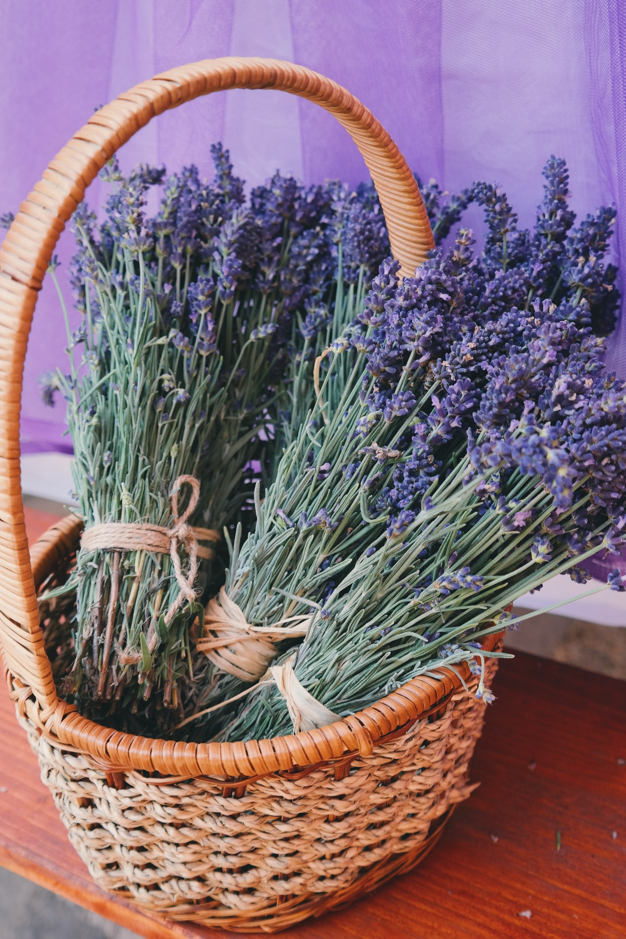 Benefits of lavender - What are benefits of Lavender Oil?